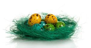 Ζωηρόχρωμα αυγά Πάσχας στη φωλιά που απομονώνεται στο άσπρο υπόβαθρο Στοκ Εικόνες