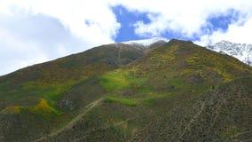 Ζωηρόχρωμα βουνά χιονιού στο θιβετιανό οροπέδιο Στοκ Εικόνες