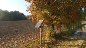 Ζωηρόχρωμα δάση και ένας σταυρός στον τομέα, εναέρια άποψη απόθεμα βίντεο