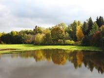 Ζωηρόχρωμα δέντρα φθινοπώρου και λιβάδι πλημμυρών, Λιθουανία Στοκ Εικόνα
