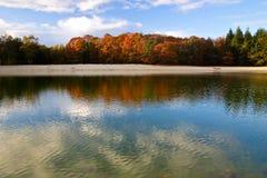ζωηρόχρωμα δέντρα φύλλων φθ& Στοκ φωτογραφία με δικαίωμα ελεύθερης χρήσης