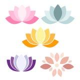Ζωηρόχρωμα εικονίδια λουλουδιών Lotus Στοκ Εικόνα