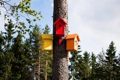 Ζωηρόχρωμα, ζωηρόχρωμα σπίτια για τα πουλιά Στοκ φωτογραφία με δικαίωμα ελεύθερης χρήσης