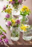 Ζωηρόχρωμα ιατρικά λουλούδια και χορτάρια στα μπουκάλια Στοκ Εικόνες