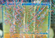 ζωηρόχρωμα καλώδια Στοκ Εικόνες