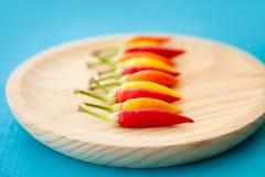 Ζωηρόχρωμα καυτά πιπέρια τσίλι σε μια σειρά στο πιάτο Στοκ Εικόνες