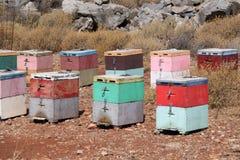 Ζωηρόχρωμα κιβώτια κυψελών στοκ φωτογραφία με δικαίωμα ελεύθερης χρήσης