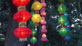 Ζωηρόχρωμα κινεζικά φω'τα φαναριών που κρεμιούνται σε ένα δέντρο φιλμ μικρού μήκους