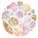 Ζωηρόχρωμα κοχύλια watercolor στη στρογγυλή σύνθεση ελεύθερη απεικόνιση δικαιώματος