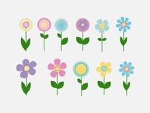 Ζωηρόχρωμα λουλούδια καθορισμένα διανυσματικά ελεύθερη απεικόνιση δικαιώματος