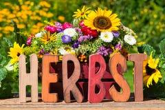 Ζωηρόχρωμα λουλούδια φθινοπώρου Στοκ εικόνες με δικαίωμα ελεύθερης χρήσης