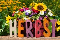 Ζωηρόχρωμα λουλούδια φθινοπώρου Στοκ Εικόνες