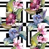 Ζωηρόχρωμα λουλούδια gardenia Floral βοτανικό λουλούδι Άνευ ραφής πρότυπο ανασκόπησης Στοκ φωτογραφίες με δικαίωμα ελεύθερης χρήσης