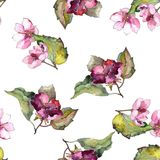 Ζωηρόχρωμα λουλούδια gardenia Floral βοτανικό λουλούδι Άνευ ραφής πρότυπο ανασκόπησης Στοκ Εικόνες