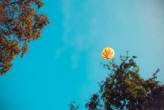 Ζωηρόχρωμα μπαλόνια ζεστού αέρα, Σύνθεση της φύσης και του υποβάθρου μπλε ουρανού σε Ayutthaya, Ταϊλάνδη Στοκ Φωτογραφία
