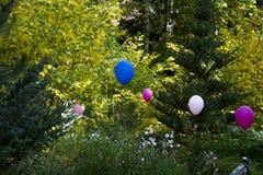Ζωηρόχρωμα μπαλόνια στο κατώφλι, επαρχία Στοκ εικόνες με δικαίωμα ελεύθερης χρήσης