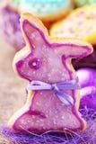 ζωηρόχρωμα μπισκότα που δ&iota Στοκ φωτογραφία με δικαίωμα ελεύθερης χρήσης