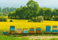 Ζωηρόχρωμα ξύλινα μελισσουργεία Στοκ φωτογραφία με δικαίωμα ελεύθερης χρήσης