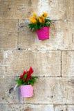 Ζωηρόχρωμα λουλούδια και δοχεία Στοκ φωτογραφίες με δικαίωμα ελεύθερης χρήσης