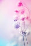 Ζωηρόχρωμα λουλούδια στο εκλεκτής ποιότητας ύφος χρώματος στη σύσταση εγγράφου μουριών Στοκ Εικόνα