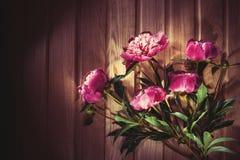Ζωηρόχρωμα λουλούδια στο ξύλινο υπόβαθρο - ζωηρόχρωμα peonies Στοκ εικόνες με δικαίωμα ελεύθερης χρήσης
