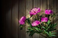 Ζωηρόχρωμα λουλούδια στο ξύλινο υπόβαθρο - ζωηρόχρωμα peonies Στοκ Εικόνα