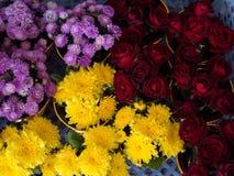 ζωηρόχρωμα λουλούδια Στοκ φωτογραφίες με δικαίωμα ελεύθερης χρήσης