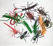 Ζωηρόχρωμα παιχνίδια εντόμων στοκ εικόνες