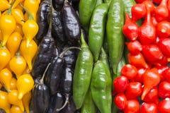 ζωηρόχρωμα πιπέρια τσίλι Στοκ Εικόνες