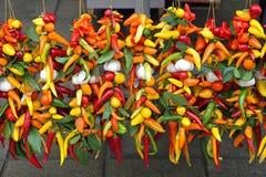 ζωηρόχρωμα πιπέρια τσίλι Στοκ εικόνες με δικαίωμα ελεύθερης χρήσης