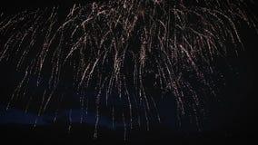 Ζωηρόχρωμα πυροτεχνήματα ενάντια στην κινηματογράφηση σε πρώτο πλάνο νυχτερινού ουρανού απόθεμα βίντεο
