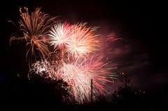 ζωηρόχρωμα πυροτεχνήματα μεταξύ των σκιαγραφιών δέντρων Στοκ φωτογραφία με δικαίωμα ελεύθερης χρήσης