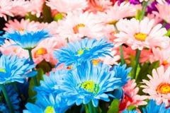 Ζωηρόχρωμα πλαστικά λουλούδια Στοκ Φωτογραφία