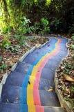 Ζωηρόχρωμα σκαλοπάτια στη ζούγκλα σε ένα πάρκο, τοπ άποψη Στοκ Εικόνες
