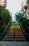 ζωηρόχρωμα σκαλοπάτια Στοκ φωτογραφία με δικαίωμα ελεύθερης χρήσης