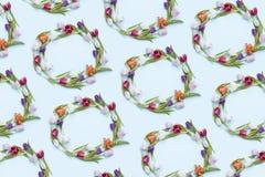 Ζωηρόχρωμα στεφάνια τουλιπών στοκ φωτογραφίες με δικαίωμα ελεύθερης χρήσης