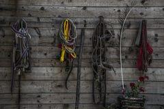 ζωηρόχρωμα σχοινιά Στοκ Εικόνες