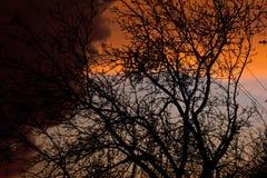 Ζωηρόχρωμα σύννεφα σε μια πτώση μετά από μια βροχή Στοκ φωτογραφία με δικαίωμα ελεύθερης χρήσης