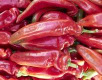 ζωηρόχρωμα φρέσκα πιπέρια κ&io Στοκ Φωτογραφία