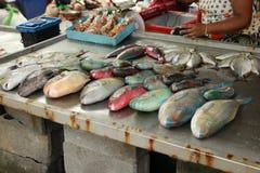 Ζωηρόχρωμα φρέσκα τροπικά ψάρια στην αγορά Στοκ Εικόνες