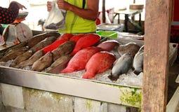 Ζωηρόχρωμα φρέσκα τροπικά ψάρια στην αγορά Στοκ φωτογραφία με δικαίωμα ελεύθερης χρήσης
