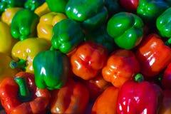 ζωηρόχρωμα φυσικά πιπέρια κουδουνιών ανασκόπησης Στοκ φωτογραφία με δικαίωμα ελεύθερης χρήσης