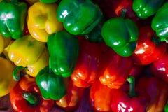 ζωηρόχρωμα φυσικά πιπέρια κουδουνιών ανασκόπησης Στοκ εικόνα με δικαίωμα ελεύθερης χρήσης