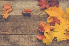 Ζωηρόχρωμα φύλλα και κάστανα φθινοπώρου στον ξύλινο πίνακα Στοκ Εικόνες