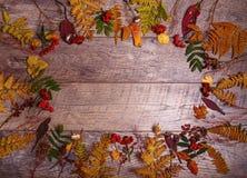 Ζωηρόχρωμα φύλλα και λουλούδια φθινοπώρου στο ξύλινο υπόβαθρο Στοκ φωτογραφία με δικαίωμα ελεύθερης χρήσης