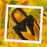 Ζωηρόχρωμα φύλλα πτώσης φθινοπώρου με την τσάντα αγορών στο άσπρο πλαίσιο Στοκ Εικόνες