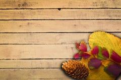 Ζωηρόχρωμα φύλλα στο εκλεκτής ποιότητας ξύλινο καφετί υπόβαθρο Στοκ εικόνα με δικαίωμα ελεύθερης χρήσης