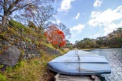 Ζωηρόχρωμα φύλλα των δέντρων στην όχθη της λίμνης το φθινόπωρο Στοκ φωτογραφία με δικαίωμα ελεύθερης χρήσης