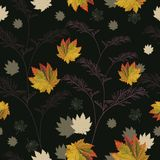 ζωηρόχρωμα φύλλα φθινοπώρ&omicr Στοκ Εικόνα