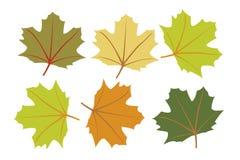 ζωηρόχρωμα φύλλα φθινοπώρ&omicr διανυσματική απεικόνιση